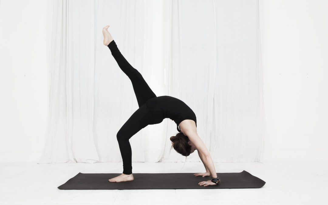 Fightmaster Yoga: The Graceful Antidote to Chatter