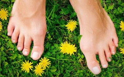 The Earthing Movie Documents Free and Potent Medicine